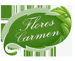 Flores Carmen en Valderas (León)